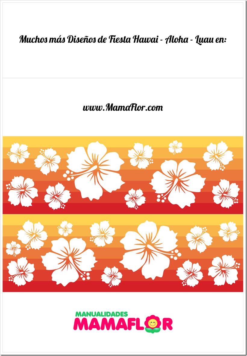 Hawaii-Aloha-Luau-Niño-Base
