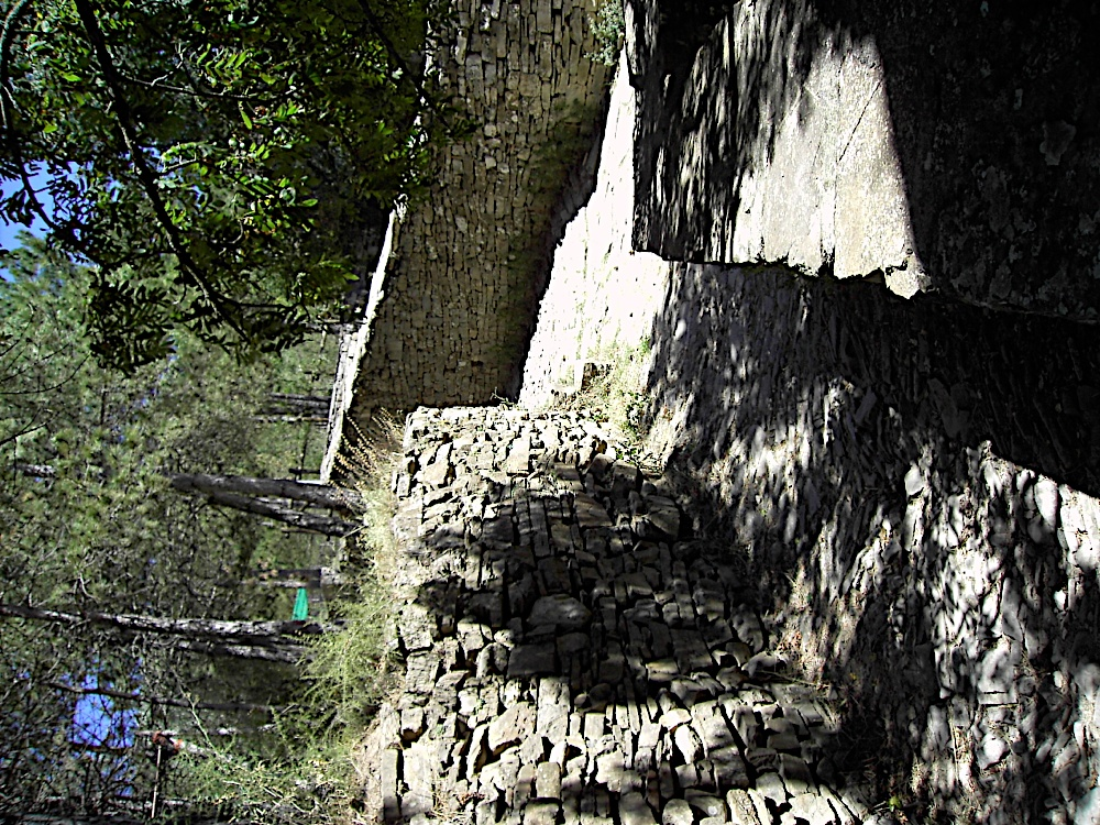 Griebal 2006 - PICT1615.JPG