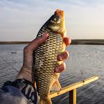 20140404_Fishing_Prylbychi_043.jpg