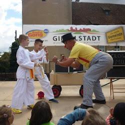Vorführung in Giebelstadt 2015