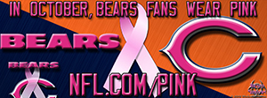 Bears Breast Cancer Awareness