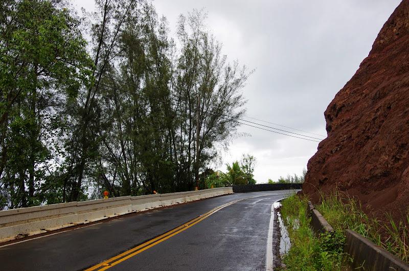 06-25-13 Annini Reef and Kauai North Shore - IMGP9300.JPG