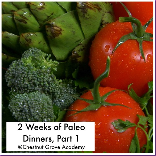 Paleo dinners
