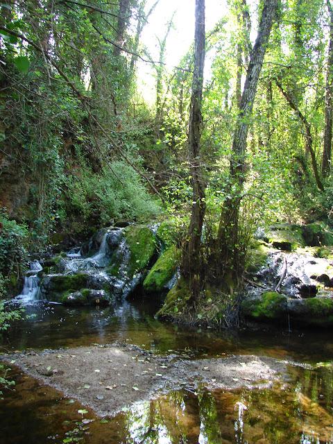 Senderismo - Baños de Popea -  Arroyo de Bejarano