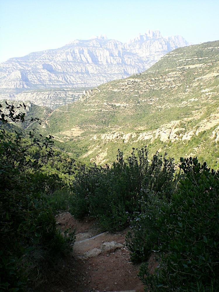 Sortida Sant Salvador de les espasses 2006 - CIMG8380.JPG