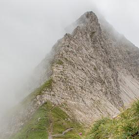 Mountain in the mist by Twan Konings - Landscapes Mountains & Hills ( clouds, mountains, sky, mountain, grass, fog, summer, travel, landscape, austria, alps, mist )