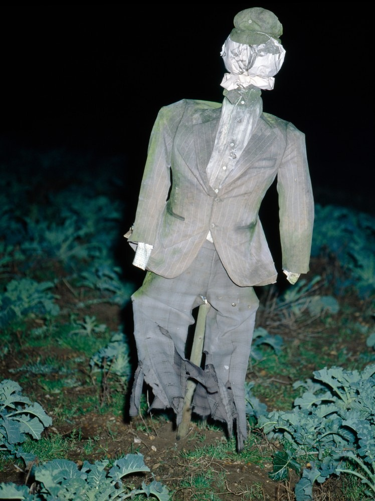 colin-garratt-scarecrows-13