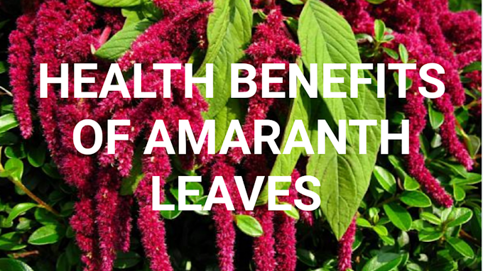 Amaranth or Rajgira:Why is amaranth banned in the US?