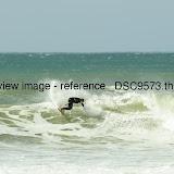 _DSC9573.thumb.jpg