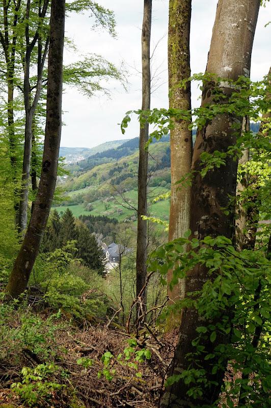 DSC03684 - Landscapes
