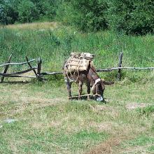 ZLET, Makedonija - makedonce%2B027.jpg