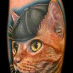 retrato de gato.jpg