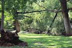 The Mooi River runs through our Fine Country Estate