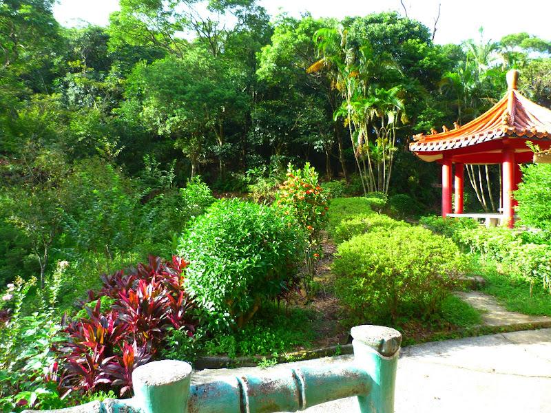 Taipei. Si Shou shan, en plein coeur de Taipei. Accès par un autre chemin moins emprunté. - P1240895.JPG