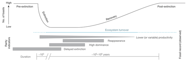 Extinction intervals have four recognized phases (at the top: pre-extinction, extinction, recovery, post-extinction), based on the richness of fossils preserved. Graphic: Hull, et al., 2015 / Nature