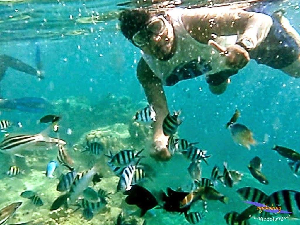explore-pulau-pramuka-olp-15-16-06-2013-04