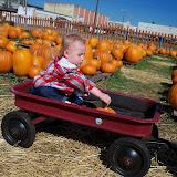 Pumpkin Patch - 115_8254.JPG