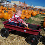 Pumpkin Patch - 115_8254.JPG