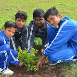 Gurukul Green Revolution (17).jpg