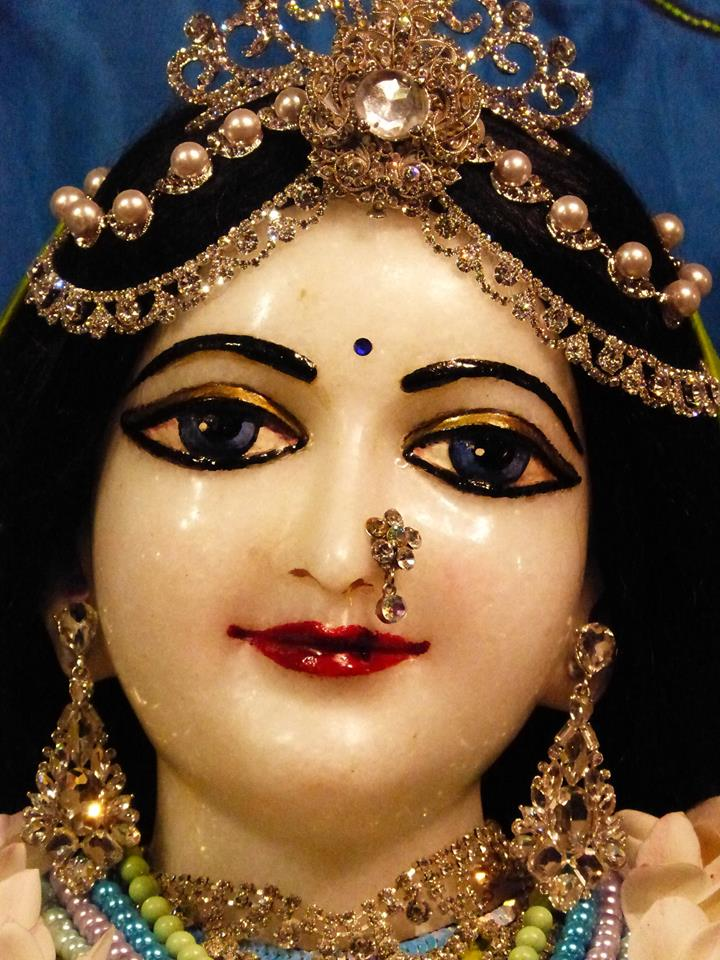 ISKCON New Govardhan Deity Darshan 01 Mar 2016 (8)