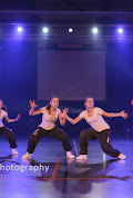 Han Balk Voorster dansdag 2015 avond-4528.jpg