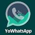 Descarga Yowhatsapp Gratis Para Android