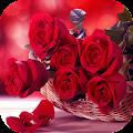 Roses Flower Wallpapers HD APK