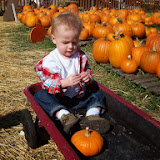 Pumpkin Patch - 114_6558.JPG