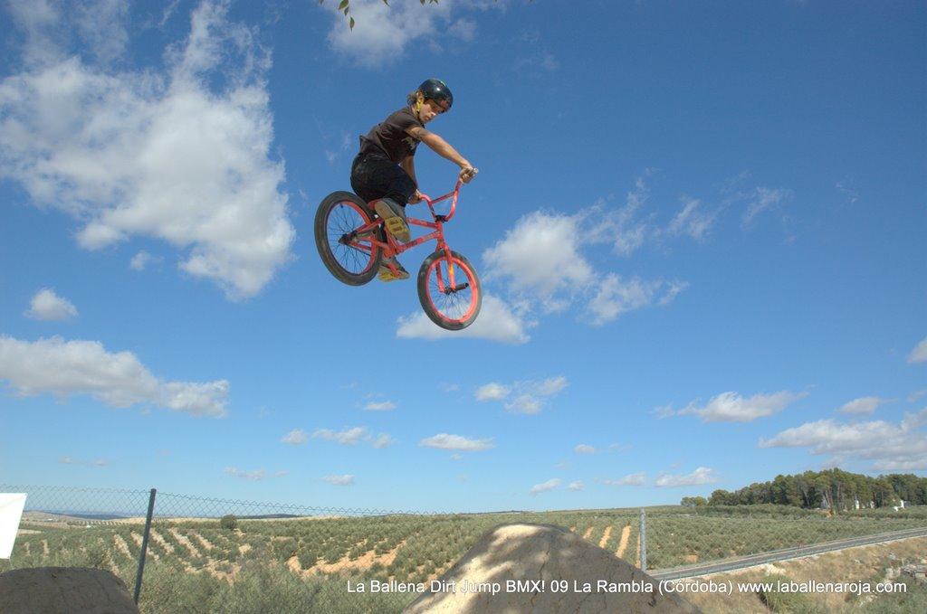 Ballena Dirt Jump BMX 2009 - BMX_09_0018.jpg