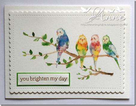 LOTV watercolour birds