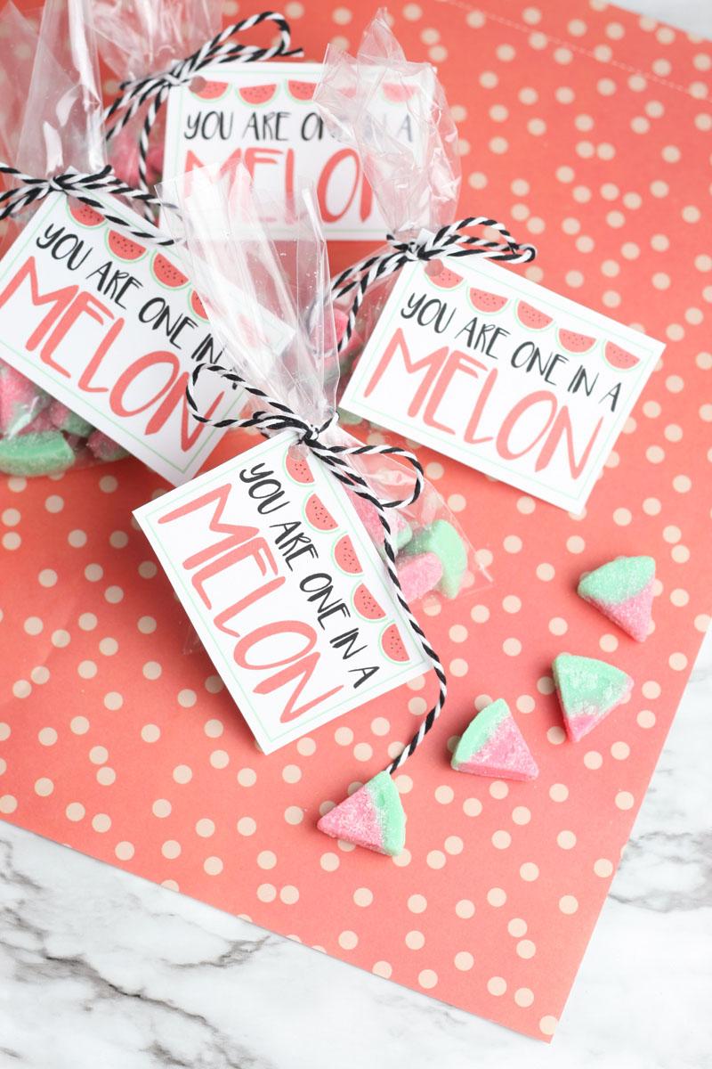 Watermelon school valentine