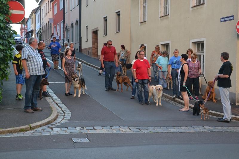 On Tour in Tirschenreuth: 30. Juni 2015 - DSC_0072.JPG