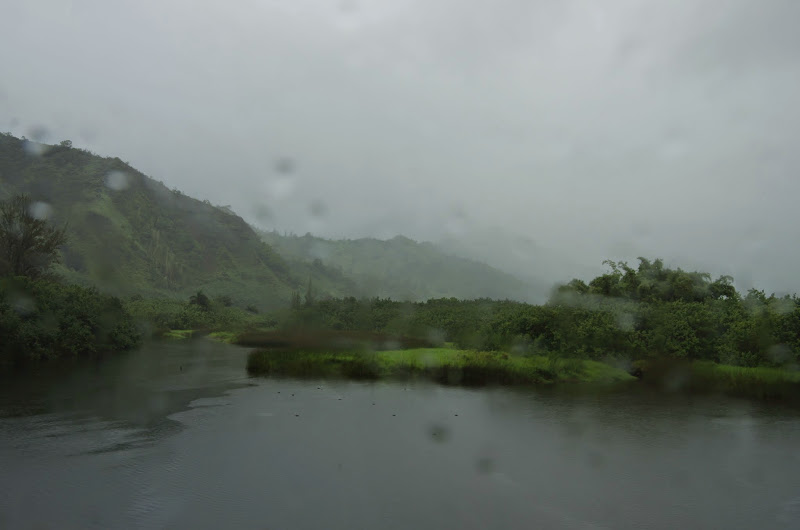 06-25-13 Annini Reef and Kauai North Shore - IMGP9295.JPG