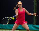 Eugenie Bouchard - Topshelf Open 2014 - DSC_6907.jpg