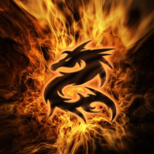 Dragonk455