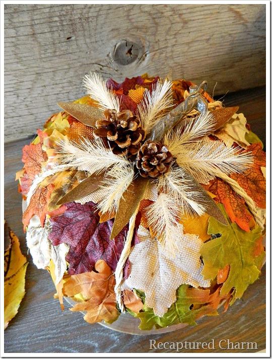 leafy pumpkin 16
