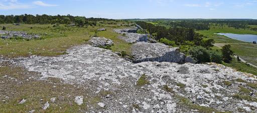 2015-06-05 061_060(Gotland)c.jpg