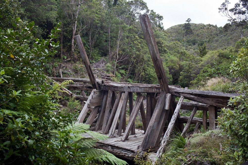 kauri-driving-dam-3