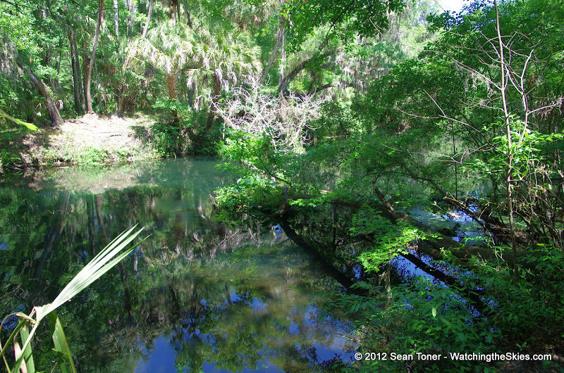 04-04-12 Hillsborough River State Park - IMGP9664.JPG