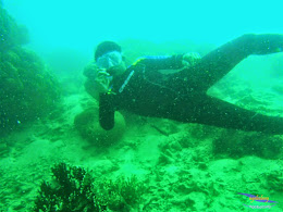 pulau harapan, 1-2 Mei 2015 panasonic  10