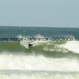 _DSC9956.thumb.jpg