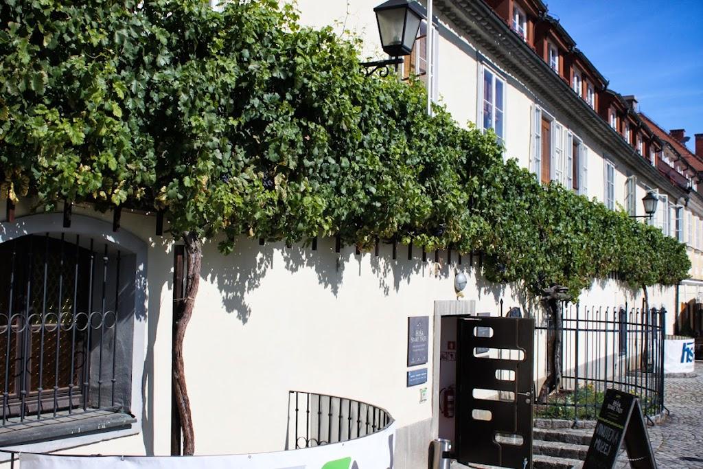 Graz and Maribor - Vika-9228.jpg