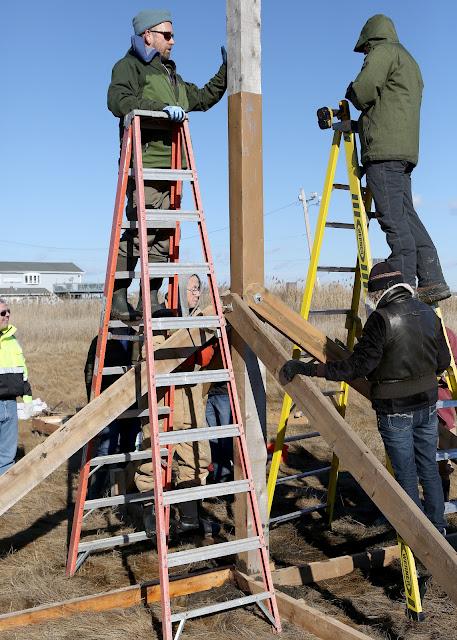 2 West Haven Osprey Platforms - 909A4287_jm.jpg