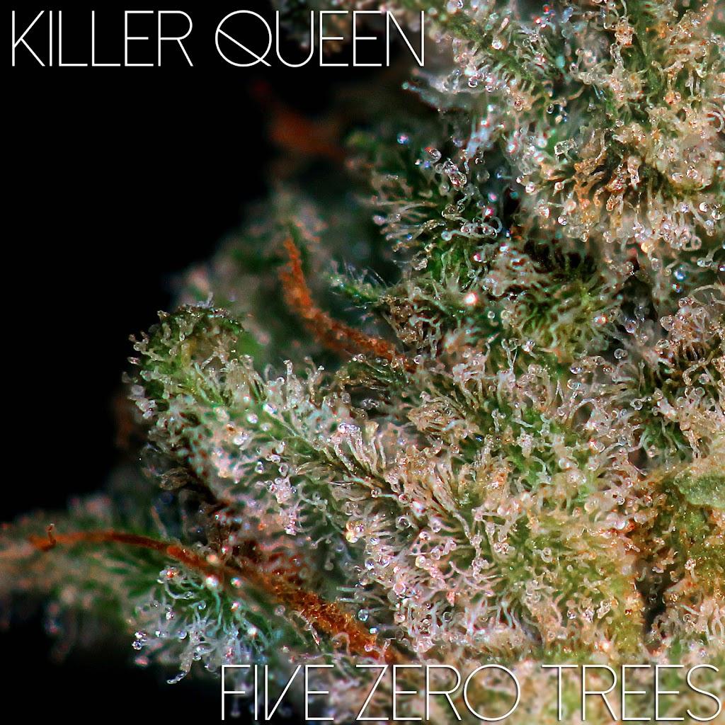 Killer Queen Macro 2
