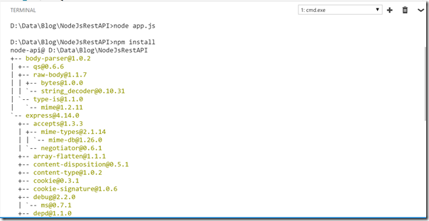 npm-install-visual-studio-code-console
