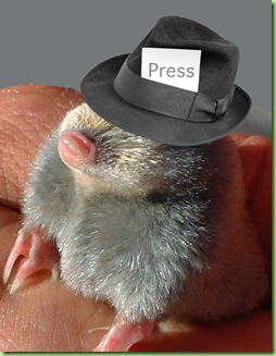 little mo press hat