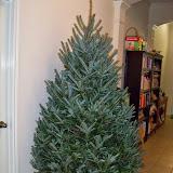 Christmastime - 116_6241.JPG