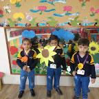 Introduction of Sunflower (Nursery) 09.02.2015