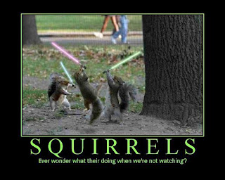 squirrels motivational poster lightsabers, squirrels lightsabers, squirrel lightsaber, motivational squirrel, ever wonder what they are doing when we are not watching, squirrel, funny pictures squirrel, funny squirrels, funny squirrel, motivational squirrels