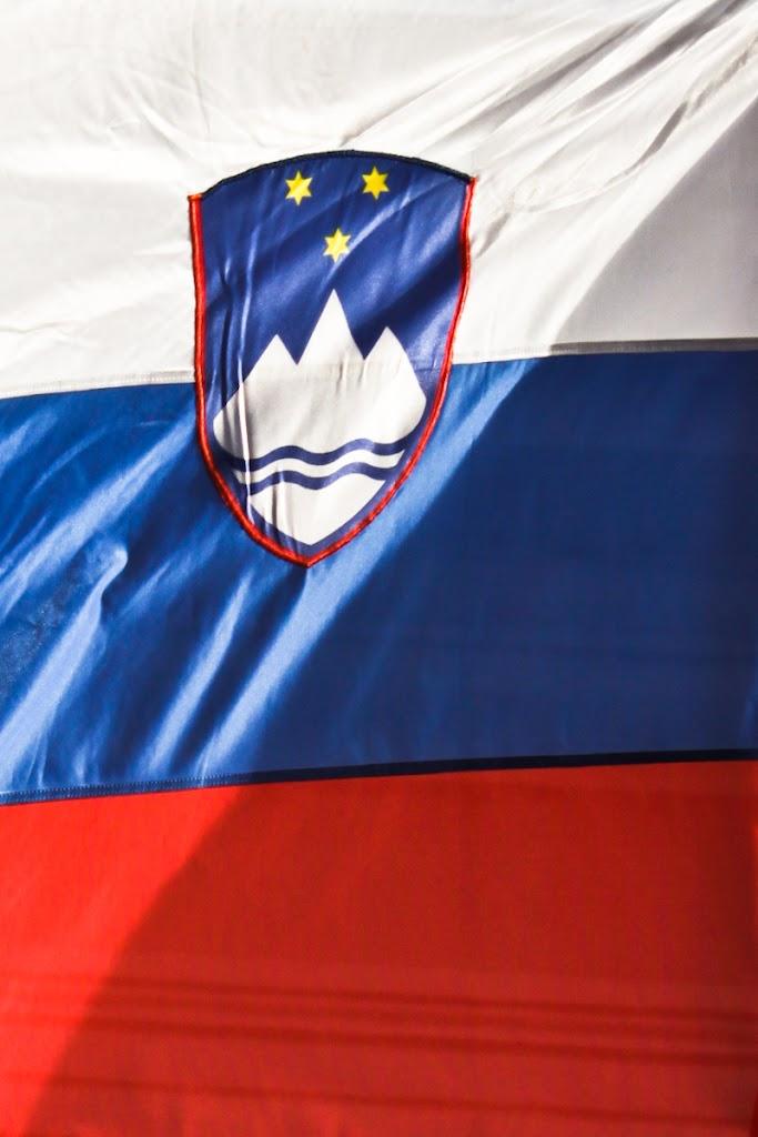 Kranj - Vika-1308.jpg